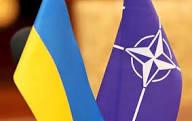 НАТО поддерживает целостность Украины