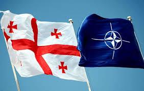 Грузия — НАТО: важные даты и события