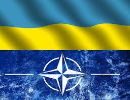 Сотрудничество НАТО — Украина: важные даты и события