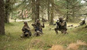 Датская Боевая группа реагирования подтвердила участие в учениях Белый Меч