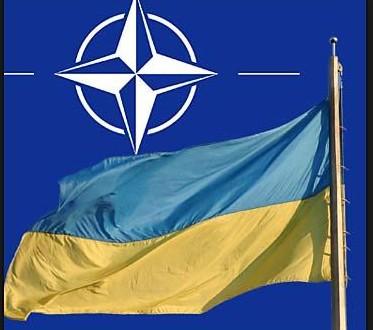 символы нато и украины