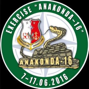 символ учений анаконда 16